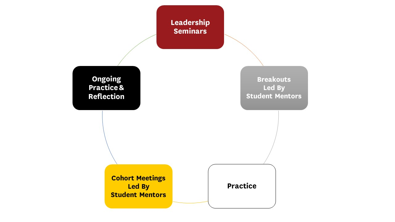Program Components consist of seminars, breakouts led by student mentors, practice, cohort meetings led by student mentors, and on-going practice